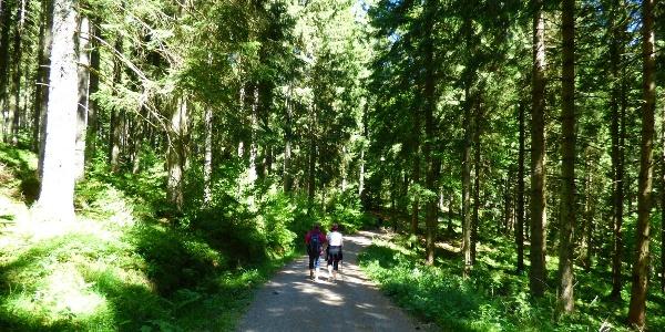 Wanderweg zum Stöckerkopf
