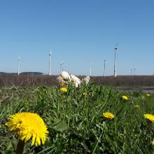 Blick über das Paderborner Land
