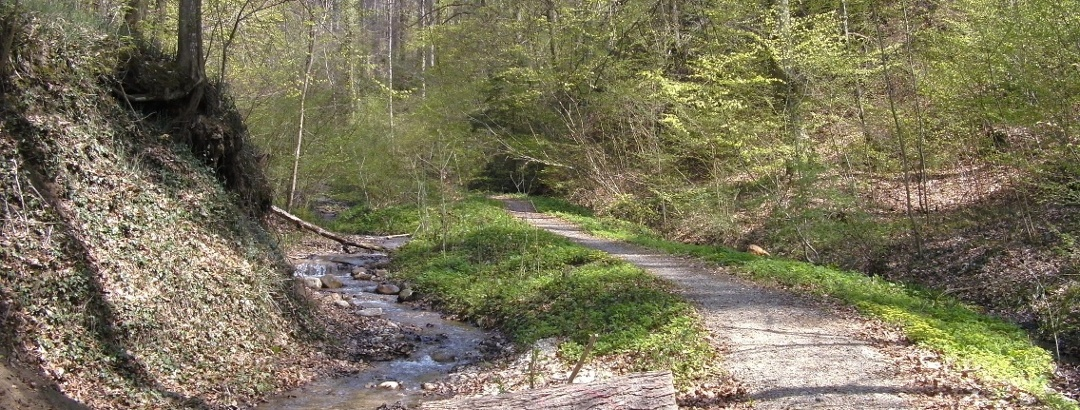 Wanderweg Frickingen - Heiligenberg