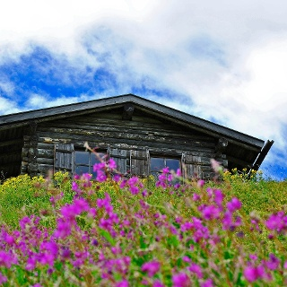 Alte Berghütte