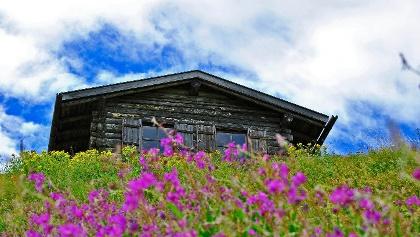 Old mountain hut