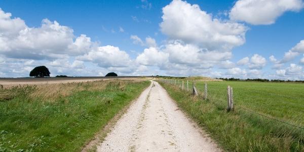 Ridgeway trail path
