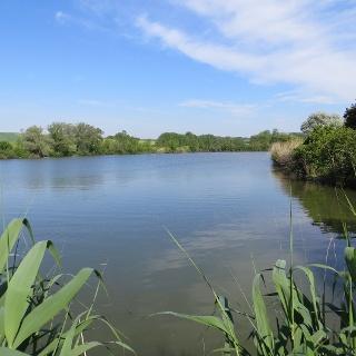 Teichlandschaft Nexing