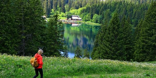 Abstieg zum Lac des Chavonnes.