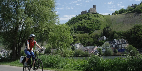 Moselle Cycle Trail next to Bernkastel-Kues