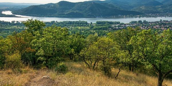 Kilátás a Gubacsi-hálásról, szemben a Visegrádi-hegység