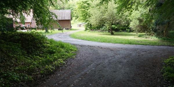 Weggabelung am TERRA.track Schmittenhöhe