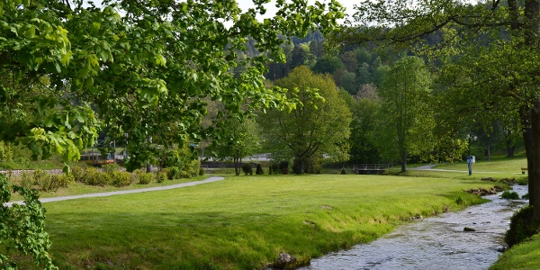 Wir folgen der malerischen Alb auf der Schweizerwiese