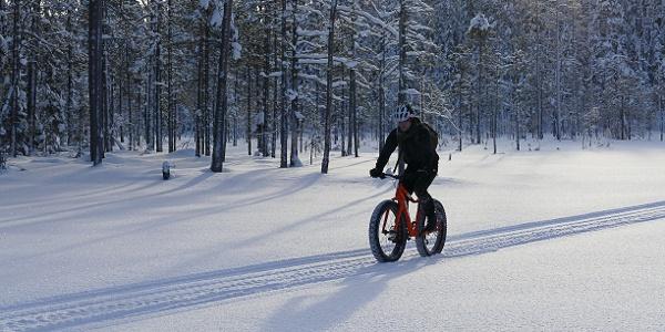 Fat Biking in Martinselkonen.