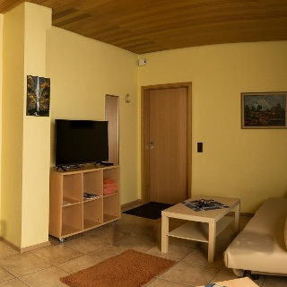 Wohn-Schlafzimmer 3