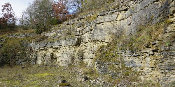 Steinbruch Hintere Weingarthalde