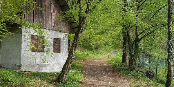Start of the trail to Mt. Žabijski vrh