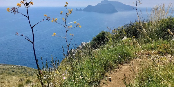 View to Capri
