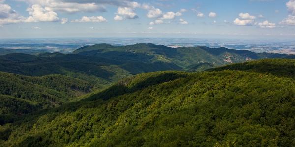Kilátás a csóványosi toronyból a Hollókő-gerinc és az Ipoly-völgy irányába