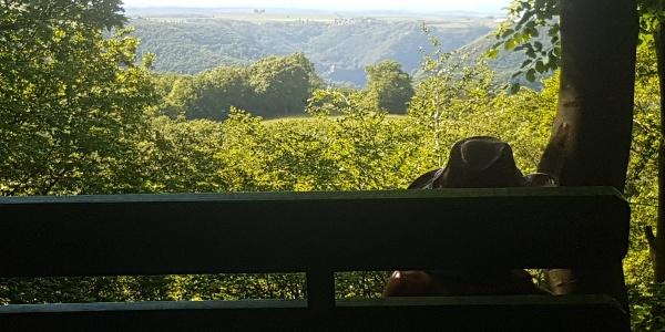 Blick vom Murscher Eselsche auf Burg Bischofstein