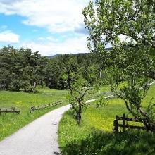 Almwiesen bei Aldein