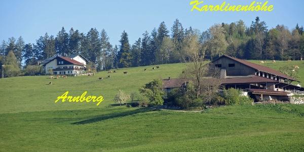 Die Ortschaft Arnberg mit Karolinenhöhe
