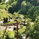 Foto von : Wandertour in der Vulkaneifel: Tal der wilden Endert Ulmen-Cochem •  (03.06.2019 09:35:44 #1)