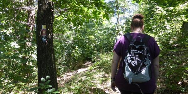 Unterwegs auf dem Geologischen Rundweg in Düdinghausen