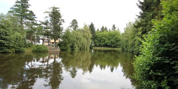 Der große Teich am Fuße der Stahlarbeitersiedlung Wenscht in Siegen-Geisweid