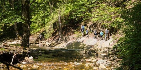 Für Kinder an 6 Jahren ein idealer Wanderspaß! Wildes Wasser, …