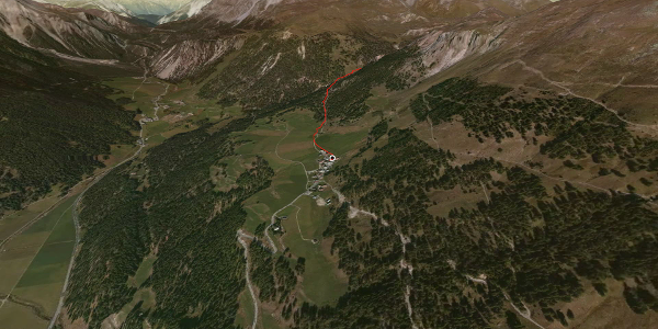 Wanderung in Graubünden: Lü - Alp Champatsch - Lü
