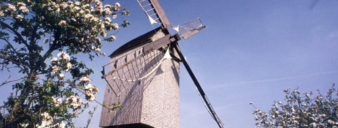 Die Bockwindmühle in Wehe