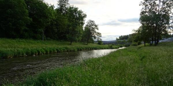 0200 Nach dem Entlisberg-Flowtrail hinunter entlang der Sihl