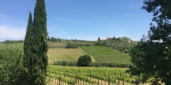 On your way to San Gimignano