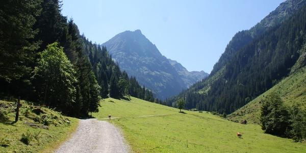 Alp road to Steinriesental valley near Untere Steinwendalm