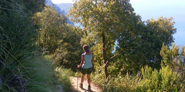 Höhenweg von Campiglia nach Portovenere