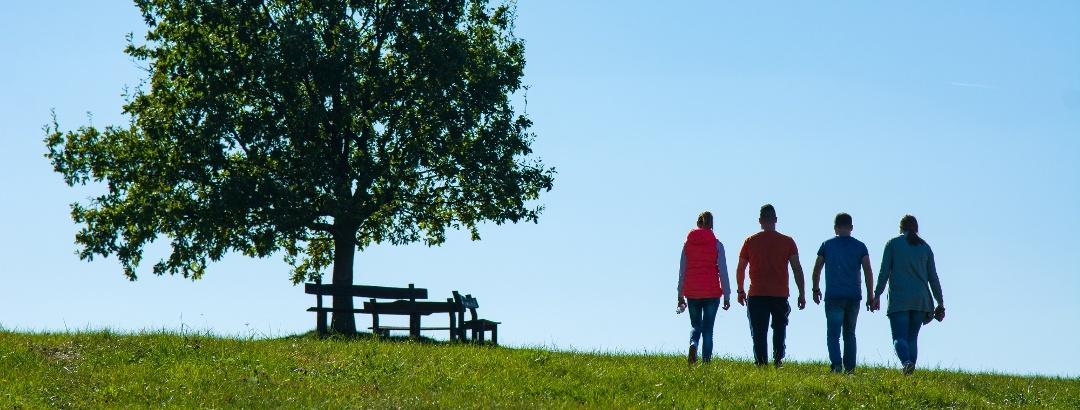Kényelmes padok a szépalmapusztai Birka-dombon