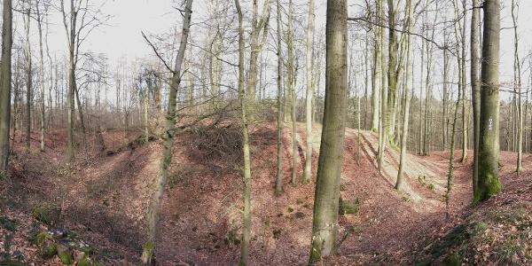 ehemalige Burg in Blankenrode