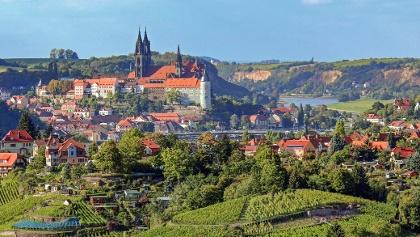 Blick auf die Altstadt von Meißen an der Elbe