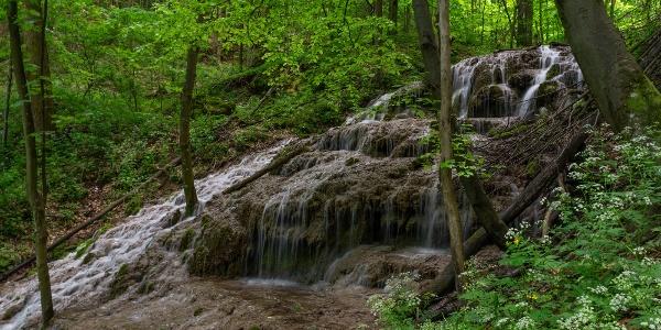 A Sebes-víz vízesése