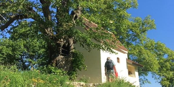 Die Reiterleskapelle