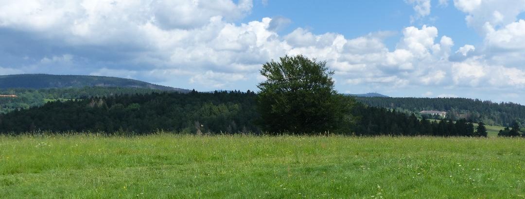Am Maththias-Schmidt Berg reicht die Sicht bis zum Brocken und Wurmberg