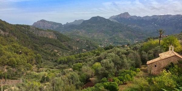 Views at the half way point of the walk
