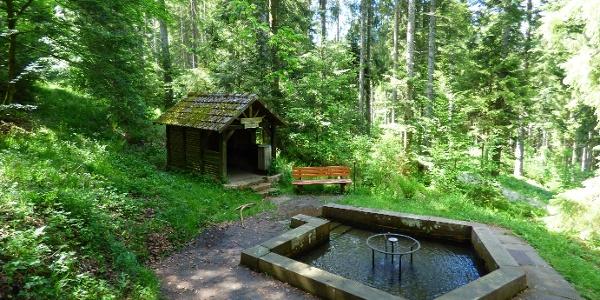 Wassertretanlage Löwenbrunnen