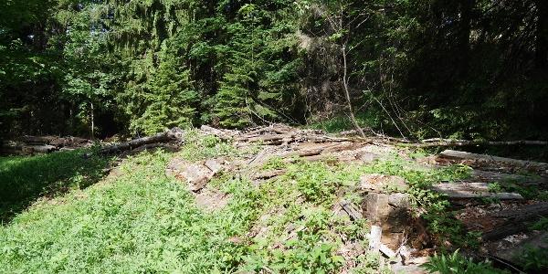 die Überreste der ehemaligen Lackerbodenhütte