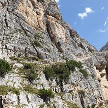 abgerutschter Weg an einer steilen Stelle im Abstieg (Route 403)