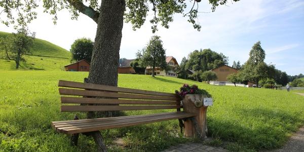 Sitzbank auf dem Milch-Kräuter-Käseweg Hergiswil b. Willisau