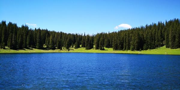 Der Igelssee ist besonders bei hohem Wasserstand im Frühsommer eine Pracht.