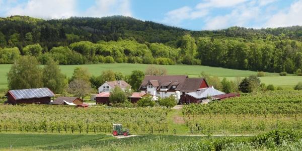 Haslerhof