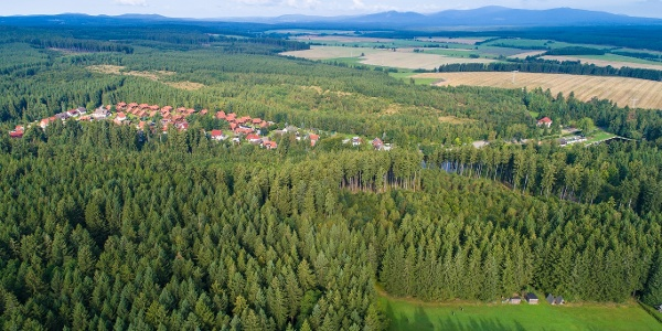 Blick über das Waldgebiet bei Hasselfelde
