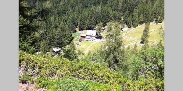 Gleich haben wir die Ifingerhütte erreicht, die malerisch eingebettet in schönster Bergvegetation zu Füßen der Felswände des 2.580 Metern hohen Ifinger, dem Hausberg von Schenna, liegt.