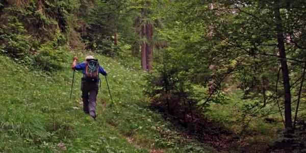 Aufstieg zum Hirschbichlkopf