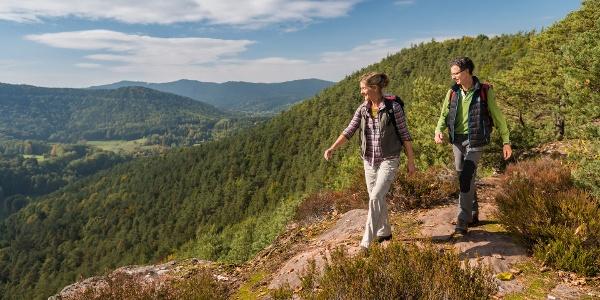 Der Dimbacher Buntsandstein Höhenweg bietet herrliche Ausblicke.