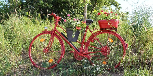 Blumen.rad.route