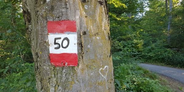 Eine kleine Liebesbekundung zum 50er?